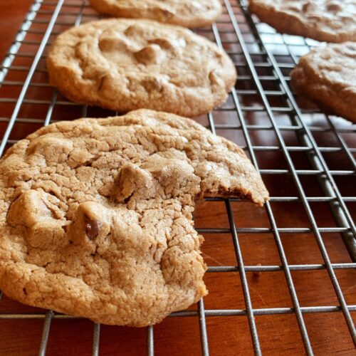 These ultimate chocolate chiip cookies are so chocolatey and your sweet tooth is satisfied with every bite